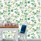 Papel-de-parede-folhagem-verde-e-branco-Allegra-53cm-x-10m-Muresco