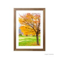 Quadro-decorativo-Peace-Tree-28x38cm-rustico-Infinity