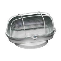 Tartaruga-oval-com-grade-branca-e-vidro-transparente-Joanto