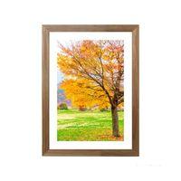Quadro-decorativo-Peace-Tree-28x38cm-rustico-Infinity