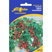 semente-Tomate-Cereja-Samambaia-All-Garden-1560980